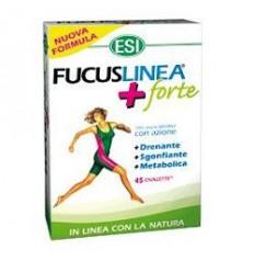 Fucuslinea+forte 45oval