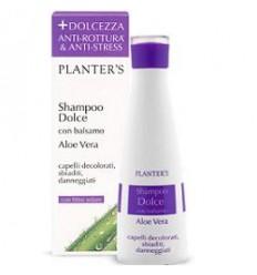 Planters Sh Dolce Aloe Vera